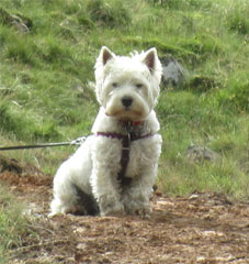Hamish a Fix The Fells Supervisor